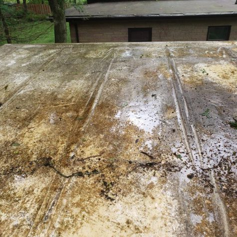 Rubber Roof Cleaning Madison Wisconsin